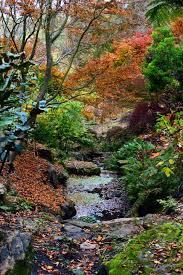 Mt Lofty Botanic Gardens Mt Lofty Botanic Garden Triptide Gardens Pinterest Gardens
