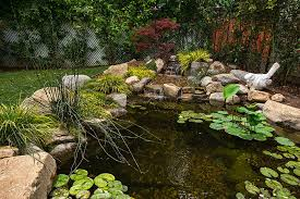 Small Backyard Ponds And Waterfalls by 53 Backyard Garden Waterfalls Pictures Of Designs Designing Idea