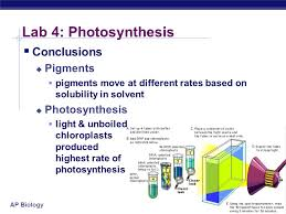 Lab Bench Photosynthesis Ap Biology Lab Review Ppt Online Download