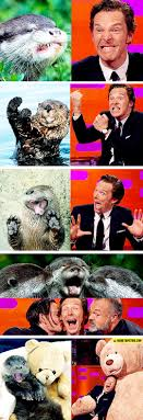 Cumberbatch Otter Meme - benedict cumberbatch reenacts otter memes the meta picture