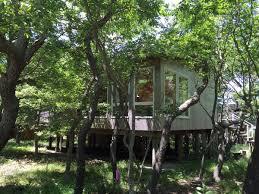 cool tree houses 700k modern u0027tree house u0027 on fire island is a minimalist u0027s dream