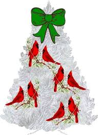 christmas tree animated images gifs pictures u0026 animations
