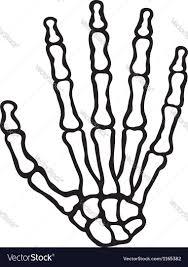 Halloween Skeleton Hands Human Skeleton Hand Royalty Free Vector Image Vectorstock