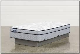 euro top mattress vs pillow top beinside net