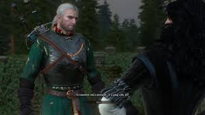 the witcher 3 wild puns witcher