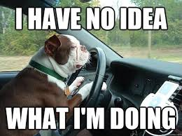 Driving Meme - when you get into a taxi you must trust the driver with your life