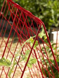 deluxe cucumber trellis gardener u0027s supply