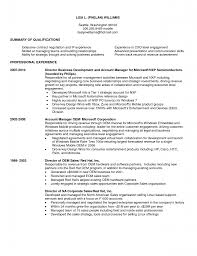 Sample Resume Objectives Business by Business Business Developer Resume