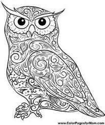 creative haven owls coloring book creative haven coloring books