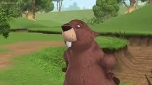 beaver winnie pooh disney wiki fandom powered wikia