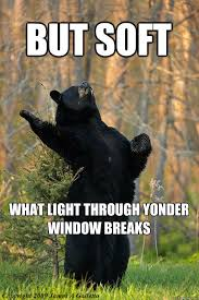 Bear Stuff Meme - 19 hilarious literary memes english literature memes and humor