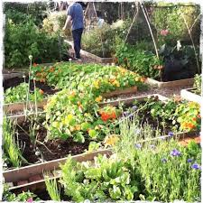 Garden Allotment Ideas 17 Best Crafty Garden Hoe Images On Pinterest Allotment
