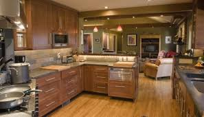 How To Design Your Own Kitchen Layout Building Your Own Kitchen Cabinets Vibrant 24 Build Your Own