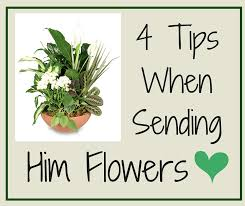 how to send flowers 4 tips when sending him flowers