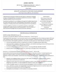 professional experience examples for resume 87 images l r
