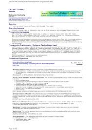 Job Developer Resume by Programmer Resume Berathen Com