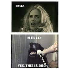 Funny Hello Meme - adele memes funny image memes at relatably com