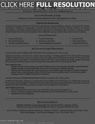 accounts payable resume with sap 123essay