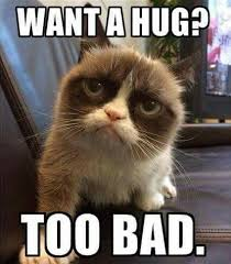 Mean Kitty Meme - sorry i m not the one tap the link now to see all of our cool