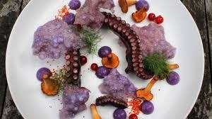 gourmet food plate gourmet food 22 dining presentation of food by