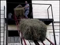 va farm bureau virginia farm bureau record cattle in va