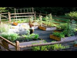 Garden Ideas For Dogs Creative Garden Ideas Diy Is Excited To Go Outside Dogs