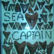 captain s table myrtle beach captains myrtle beach south carolina fossil shark tooth sign