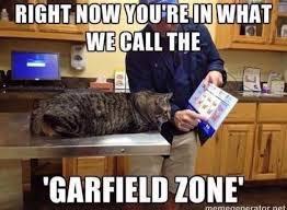 Vet Memes - veterinary memes google search vet stuff pinterest