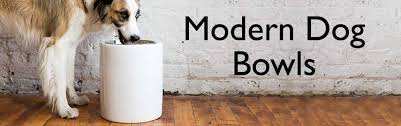 modern dog ring holder images Modern dog bowls shop modern dog bowl designs on sale jpg