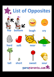 opposites worksheets guruparents