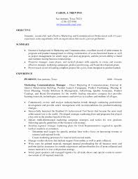 Examples Of The Resume Objectives by Examples Of Objectives On Resumes Fresh 1000 Ideas About Resume