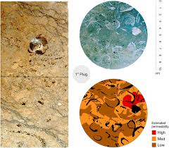 carbonate rocks and petroleum reservoirs a geological perspective