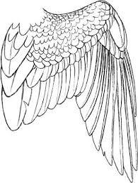 25 bird wings ideas art reference angel