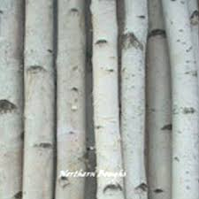 chuppah poles birch chuppah poles birch fireplace logs and birch arches