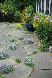 Slate Pavers For Patio by Best 25 Flagstone Patio Ideas Only On Pinterest Flagstone