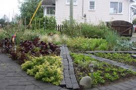 front yard vegetable garden designs exprimartdesign com