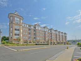 1 bedroom apartments stamford ct apartments for rent in stamford ct glenview house apts photos