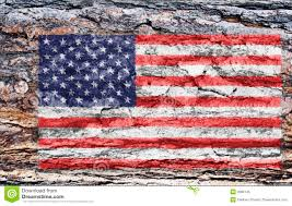 American Flag Pictures Free Download American Flag Painted On Tree Back Stock Image Image 2086145