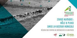 chambre r馮ionale d agriculture bretagne guide zones humides 2017 rôle et place dans la gestion agricole