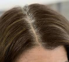 tame gray hair that sticks up how to cover gray hair