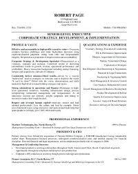 resume format sles image of resume format sales template for resume image of resume