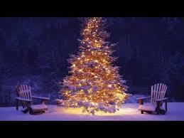 long branch tree lighting 1 hour of christmas music instrumental christmas songs playlist