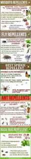 best 25 fly remedies ideas on pinterest flies repellent outdoor