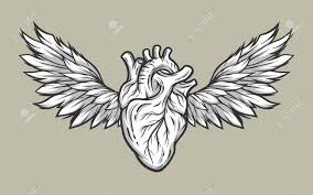 anatomical heart with wings tattoo sign symbol line art style