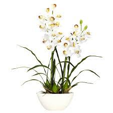 cymbidium orchid cymbidium orchid silk flower arrangement free shipping today