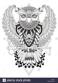 mysterious owl coloring page in exquisite line stock vector art