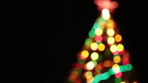 abstract tree bokeh lights blinking on black background