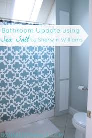 For The Bathroom Sherwin Williams Bathroom Update With Sea Salt By Sherwin Williams Bonnie Donahue