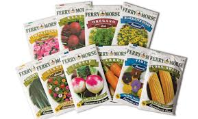 seed packets ferry morse seed co american profile