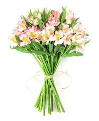 Flowers Same Day Delivery Flower Haul Same Day Flowers Same Day Delivery Order By Midday